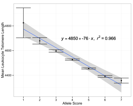 Telomere length versus the sum of telomere-shortening alleles in each individual (allele score), +/-  the standard error; data from doi: 10.1093/jnci/djv074