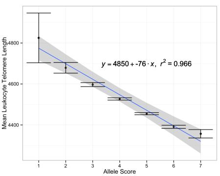 Telomere length versus the sum of telomere-shortening alleles in each individual (allele score), +/-  the standard error; data from doi: 10.1093/jnci/djv074